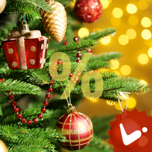 Grab The Discount Offer On Christmas For Web And Mobile App Development